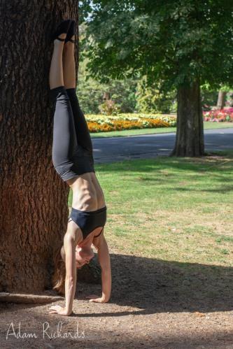 hatha yoga  schedule